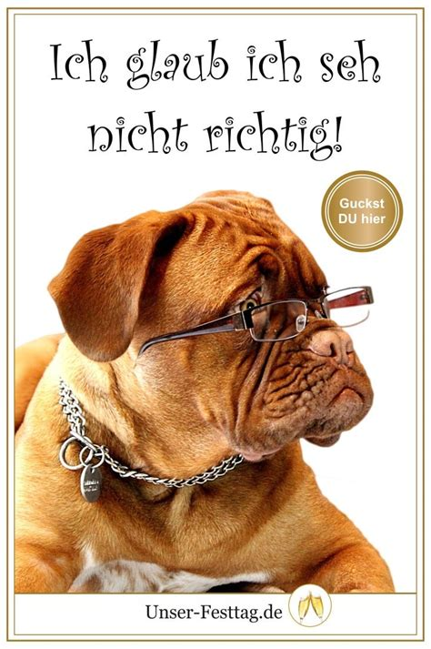 lustige geburtstagseinladungen mit hund und anderen