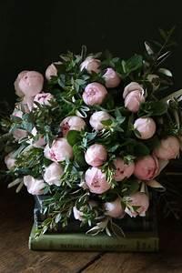 Langage Des Fleurs Pivoine : les 107 meilleures images du tableau le langage des fleurs sur pinterest ~ Melissatoandfro.com Idées de Décoration