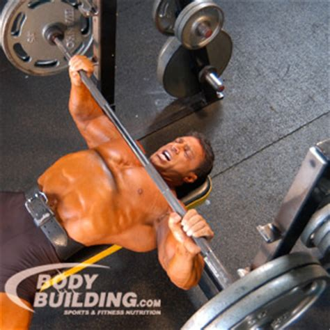 Competition Bench Press Meet Rules