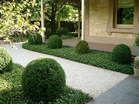 Gravel Path Edged By Vinca With Sculpted Boxwood Bubbles