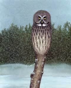 Common Minnesota Winter Birds