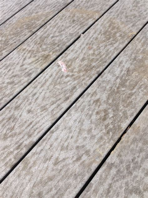 rhino hide   clean  composite deck easy care
