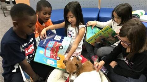 preschool asheville asheville preschool students read with a 4 legged tutor wlos 467