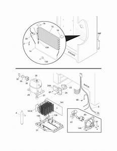 Freezer Compressor Wiring Diagram