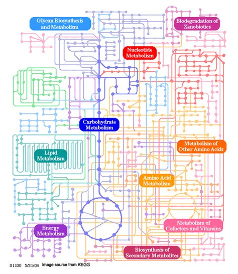view of all metabolism pathways http flipper diff org