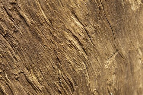 Free photo: Wood Surface   Plank, Real, Sample   Free