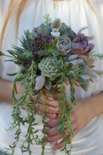 wedding accessories wholesale succulent bouquets succulents for sale bulk succulent wedding favors