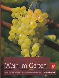 Wann Wein Pflanzen : wann wein schneiden weinrebenschnitt teil 1 heinrich beltz wein richtig qvc gartentipp april ~ Orissabook.com Haus und Dekorationen
