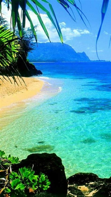 die hawaii inseln die lokation des traumurlaubs