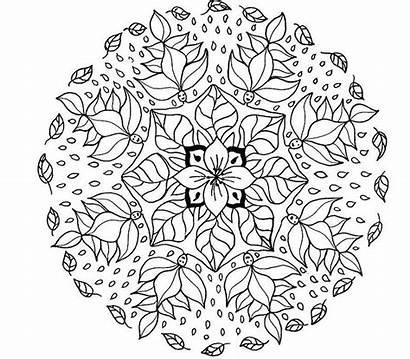 Mandala Coloring Printable Flower Mandalas Advanced Pdf