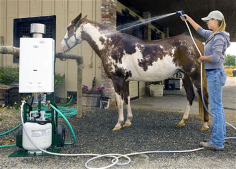 equine shower decker s washer pet shower