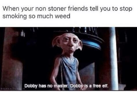 Weed Smoking Meme - funny dob memes of 2017 on sizzle dank