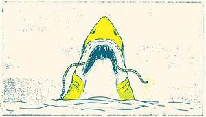 The Whalebone Guide To Survival At Sea  U00bb Whalebone
