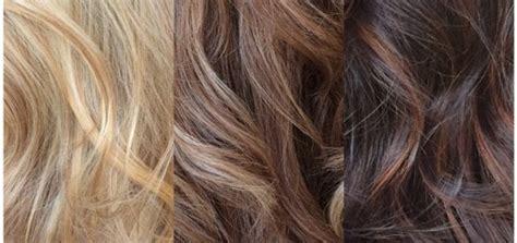 Pravana Pink-magenta-whild Orchid Ombre Hair Dye Formula