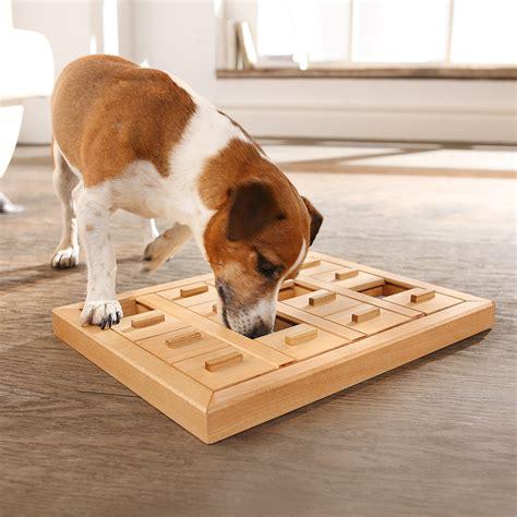 intelligenzspielzeug fuer hunde