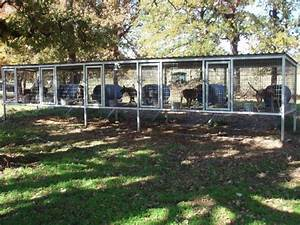 Multiple dog above ground dog kennel dog kennels for In ground dog house