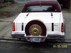 Dion187 1981 Cadillac Eldorado Specs  Photos  Modification