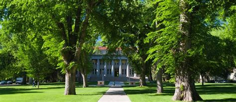 top    colleges  college plan