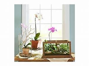 Decoration D Interieur Idee : 42 id es deco pour des plantes d int rieur ~ Melissatoandfro.com Idées de Décoration