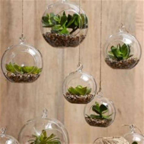 Grow Lights For Indoor Plants Singapore by Best Plants That Suit Your Bathroom Fresh Decor Ideas