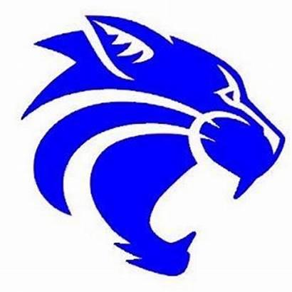 Mascot Ware Fayette Wildcat Football Yahoo Head