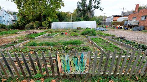 urban farms fuel idealism profits     salt