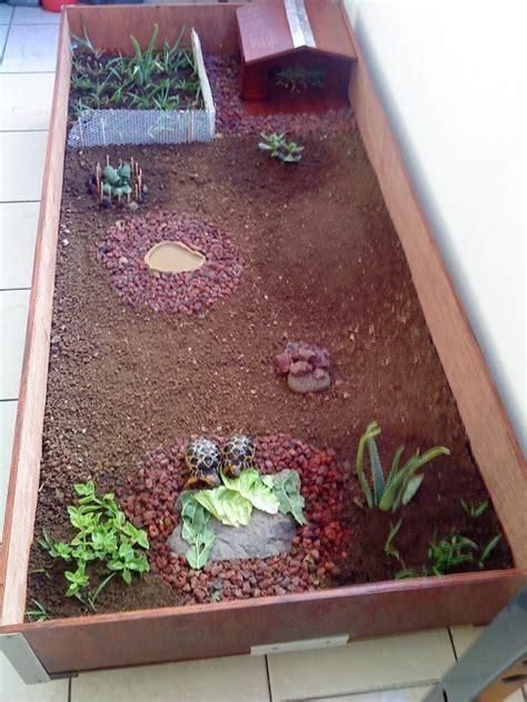 maison dans la cagne mon terrarium fait par moi m 234 me