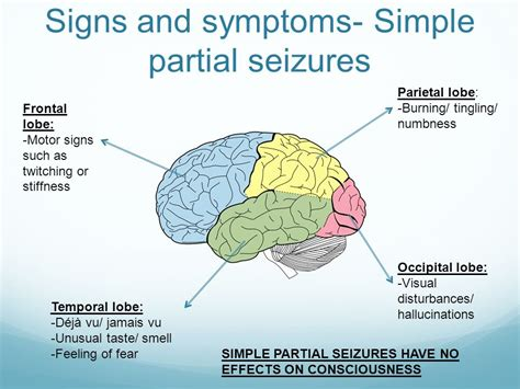 Epilepsy Kate Mcgrawallen  Ppt Video Online Download. Portal Signs Of Stroke. Closure Signs. Plant Lettering. Folder Stickers. Jungle Tree Murals. Bearded Dragon Signs Of Stroke. Usc Banners. French Signs Of Stroke
