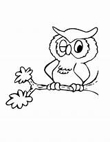 Coloring Owl Pages Bird Birds Winking sketch template