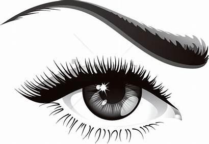 Eyelash Transparent Lash Eye Vector Eyelashes Ojo