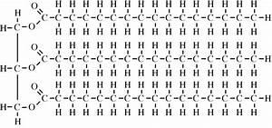 Chem2u  Saturated Fat Molecule Or Unsaturated Fat Molecule