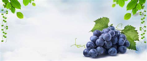 grape dream blue poster background banner grape fruit