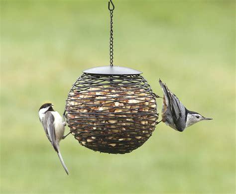 mesh bird feeder unique bird feeder