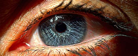 scientists  created  artificial retina implant