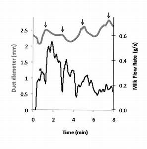 Milk Duct Diameter Measured With Ultrasound And Milk Flow