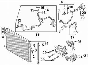 Ford Explorer A  C Service Valve Cap  Liter  Hose  Tube