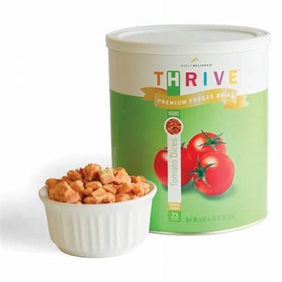 Freeze Thrive Dried Tomato Tomatoes Them Sun