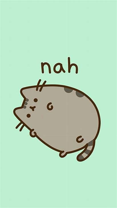 Kawaii Pusheen Donut Cats Wallpapers Backgrounds Evil