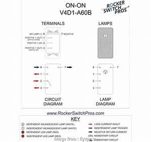 10 Brilliant Marine Raider Toggle Switch Wiring Diagram