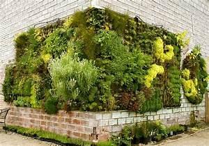 vertikaler garten h ngende g rten pflanzen vertikal With feuerstelle garten mit vertikal gärtnern balkon