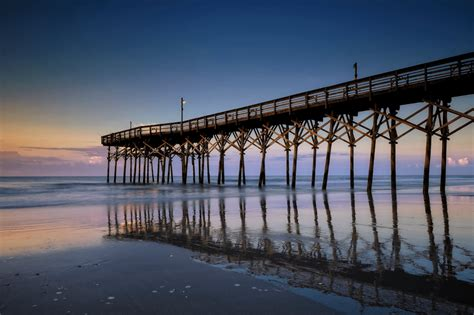 pier  fishing report fishing information myrtle