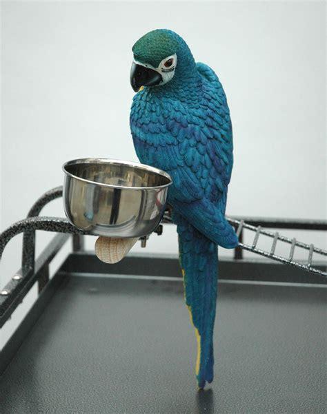 gabbia per pappagalli usata gabbia per pappagalli animalmarketonline