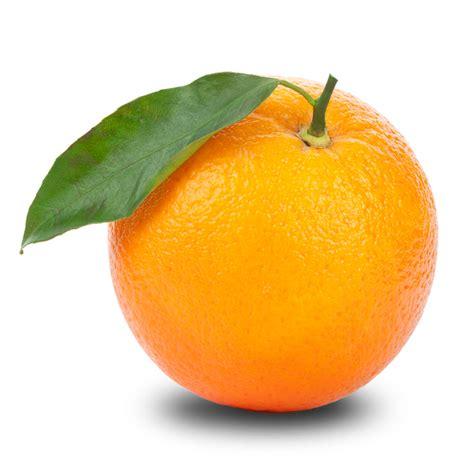 orange clipart transparent 20 free Cliparts | Download ...