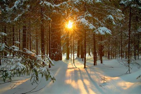 december solstice traditions  customs