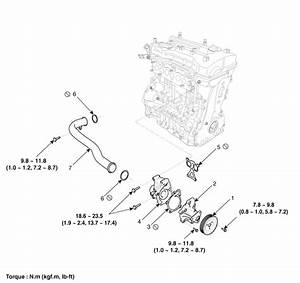 Hyundai Santa Fe  Water Pump  Components And Components