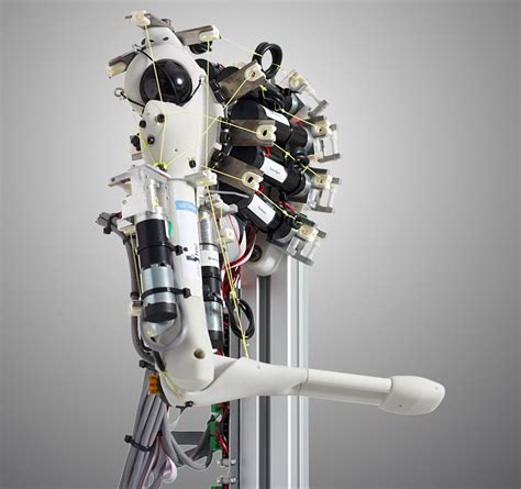 cord covers for eccerobot mimics human skeleton and muscles