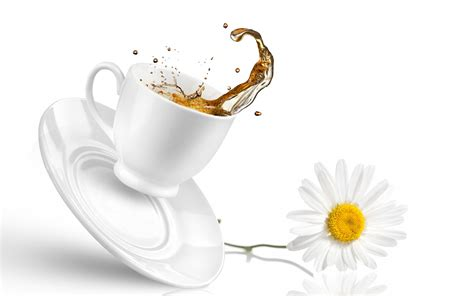beautiful tea cup hd wallpaper hd latest wallpapers