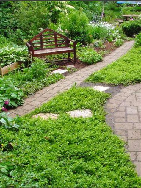 lawn to garden replacing your lawn with landscaping diy