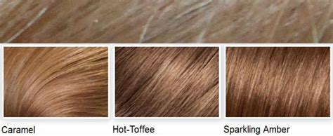 Hair Color Images With Names by 1000 Ideas About Hair Color Names On Shades