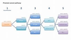 Diagram  Blood Pathway Diagram Full Version Hd Quality